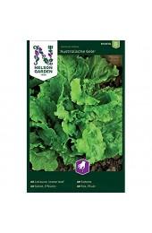 Nelson Garden 1933 Salat Pflück- Australische Gele Samen (Einzelpackung)