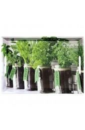 Kesper Serviertablett 77334 Motiv: Herbs Maße: 50 x 35 x 4 5 cm Grün 5 cm